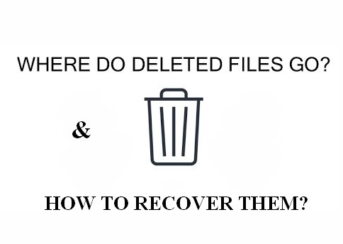 Where do deleted files go 1