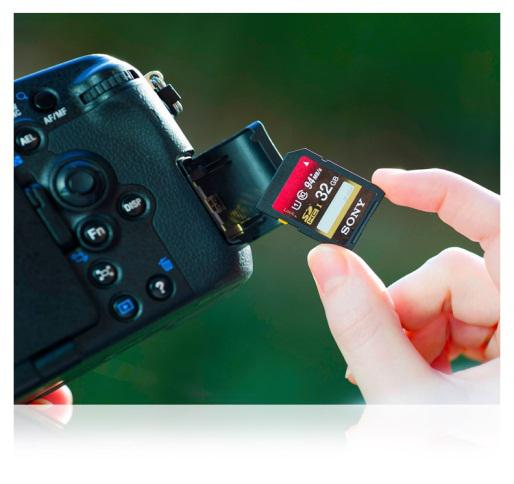 Recover deleted files from SD card 1